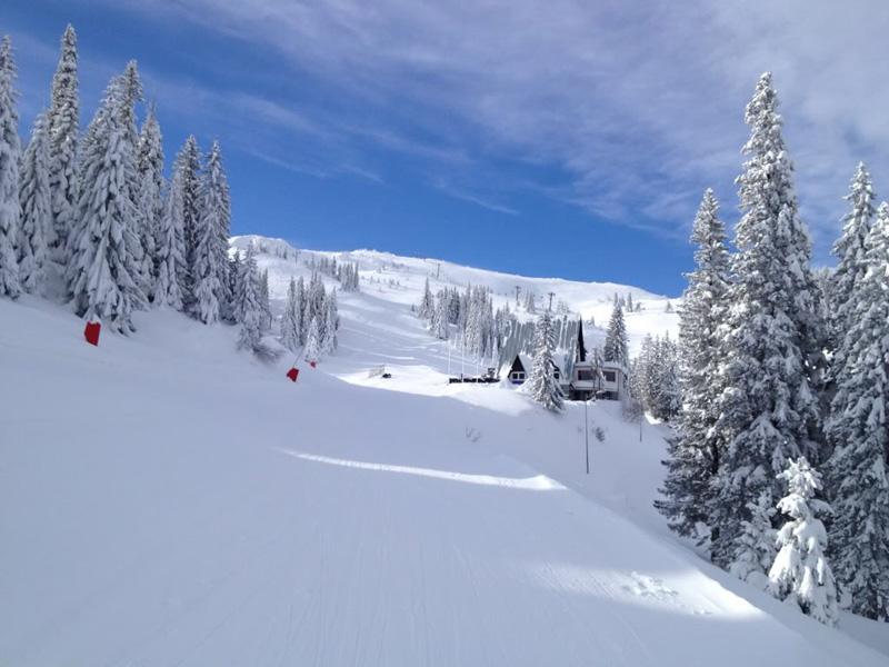 skijanje programi
